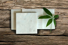"Carrara White Marble Square Coasters / Trivet 8"""