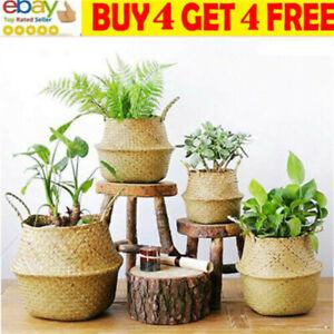 Seagrass Basket Belly Flower Plant Woven Storage Wicker Pot Home Laundry Decorma