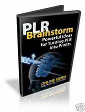 How To Turn PLR Into Profits Tutorial Videos on CD