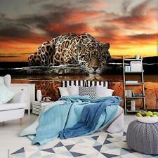Vlies   Fototapete Tapete für die Küche 15F0103940 Sonnenuntergang über nebligen