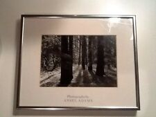 Ansel Adams Yosemite Forest Floor - Framed Matted Nature Photo