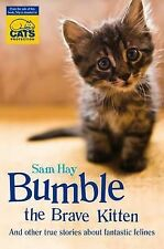 Bumble the Brave Kitten: In association with Cats Protection, Hay, Samantha, Ver