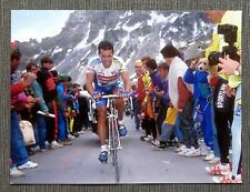 Pressefoto Stephen Roche 20x15cm, Tour de France 1993
