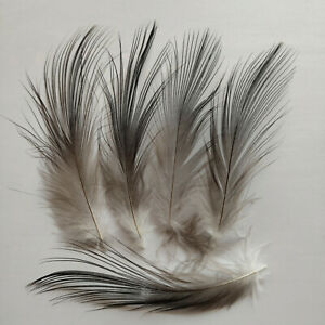 10-100pcs Precious 2-8 inches/5-20 cm Black Heron Silk Feathers For Decoration