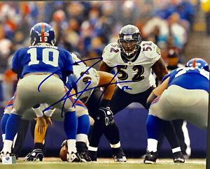 Ray Lewis Baltimore Ravens Signed 11x14 Photo Autographed Auto COA