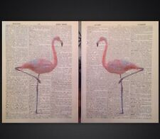 2 X Vintage Pink Flamingo's Original Dictionary Print Page Wall Art Picture