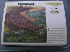 carte FICHE CARD dinosaure  deinosuchus 16 x 12 cm