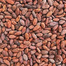 CRIOLLO COCOA BEANS NATURAL NO ROASTED FERMENTED VENEZUELAN CHUAO CACAO 1KG