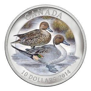 Ducks of Canada - Pintail Duck - 2014 Canada 1/2 oz Pure Silver Coin - RCM