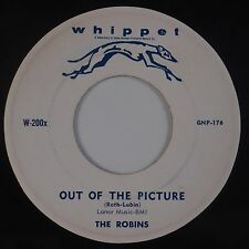 THE ROBINS: Out of the Picture / Cherry Lips WHIPPET VG+ Doo Wop 45 Obscure HEAR