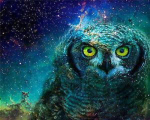 5D Diamond Full Drill Painting Cross Stitch Decor Number 20*25cm 9143 Owl
