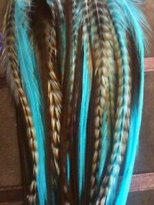 5 Feathers 4-6 Turquoise, Genuine Grizzly & Browns Extension for Hair Extension