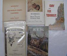 Lot 5 Outdoors Nature Mammals Fox Gray Squirrels Elk Deer Los Angles California