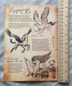 Harry Potter Geek Gear Magical Creatures 2021 Hippogriff Buckbeak Art print