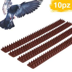 Dissuasori Piccioni Plurispillo Plastica 10 PZ Per Uccelli Colombi Volatili 5 Mt