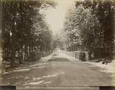 L.P. France, Versailles, grand Trianon, le buffet et l'allée  vintage album
