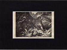 Antique matted print :St. Bernard (dog) / Sint-Bernard hond houtgravure 1835