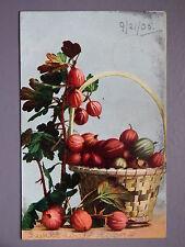 R&L Postcard: Basket of Fruit, Still Life, 1905, H Graham Glen, Leeds