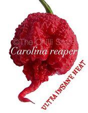 Carolina Reaper Chilli Seeds x 10 Genuine HP22B