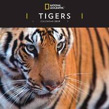 National Geographic Tigers Calendar 2019 Travel & Transport Month To View New