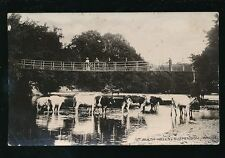 Wales Brecknockshire BUILTH WELLS Suspension Bridge rural scene 1915 PPC