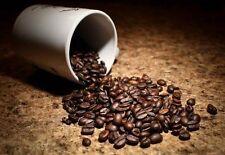 2.5 lbs El Salvador SHG Santa Maria RFA Coffee Beans Medium Roast, Fresh daily