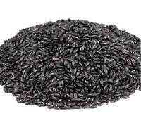 Raw Nature Korean Chinese Black Rice Forbidden Rice 2 Lb Bag