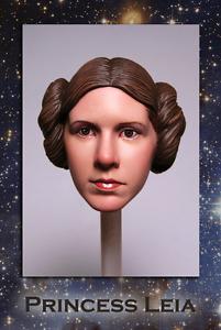 Small Studios 1/6 Princess Leia Star Wars ANH Sideshow head Hot Toys