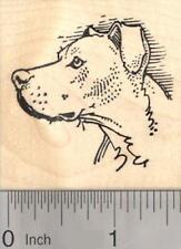 Pitbull Dog Rubber Stamp, Profile E19202 WM
