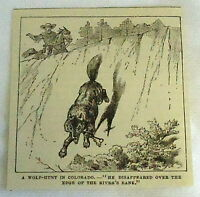 small 1882 magazine engraving ~ WOLF-HUNT IN COLORADO, wolf jumps over edge