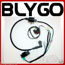 Complete Kick Start Engine Wiring Harness Loom 50cc 125cc 140cc PITPRO Dirt Bike