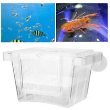 Aquarium Fisch Zuchttanks Ablaichkasten Fischzucht Box Inkubator Acryl Zuchtbox
