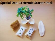 """""""Special Deal 1"""" Hermie starter pack! Hermit crab food, shells, accessories"""