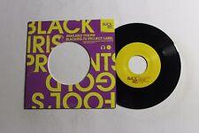 FOOLS GOLD Surprise Hotel 45 Black Iris Music US 2009 VG++ RARE INDIE REC. B5