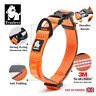 Genuine Truelove Soft Padded Adjustable Reflective Strong Dog Collar S M L