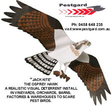 Realistic Hawk Kite Visual Bird Deterrent -Tyvek material seconds to assemble