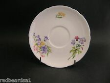 China Replacement Shelley Vintage Wild Flowers Saucer England 13668 c1940s 14cm