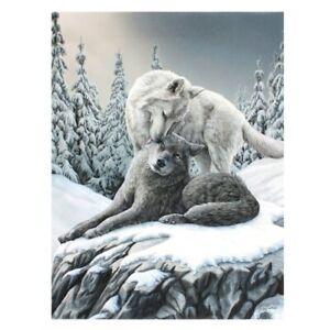 Lisa Parker, Kleine Leinwand, Bild, Leinwanddruck, Wolf, Snow Kisses
