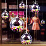 SUPER CLEAR FLOWER BALL CHRISTMAS TREE HANGING BAUBLES ORNAMENT DIY DECOR