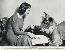 SKYE TERRIER AMERICAN CHAMPION DOG AND JANETTE MACDONALD FILM STAR 1934 PRINT