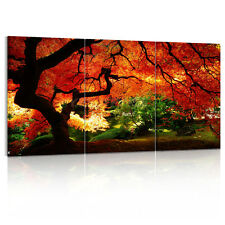 US STOCK Canvas Print with Wood FRAMED Autumn Big Tree Wall Art Picture Decor