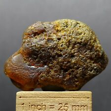 ZB86- SUCCINITE - NATURAL BALTIC AMBER FROM POLAND