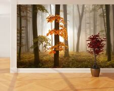 Papier Peint Photo Mural + Gratuit Adhésif 366x254cm Automne Forêt Orange