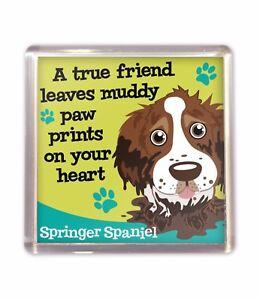 Brown Springer Spaniel Friend Cute Fridge Magnet Dog Lovers Gift Stocking Filler