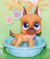 New 244 GREAT DANE Caramel & Brown Collar Littlest Pet Shop Spring Swim Pool