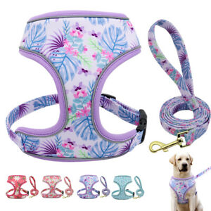Soft Dog Harness and Lead Set for Small Large Dogs Adjustable Reflective Vests