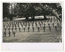 World War I - Vintage 8x10 Publication Photograph - Military Cemetery