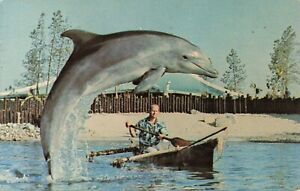 Postcard Fisherman's Surprise Sea World San Diego California