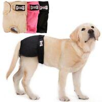 Hündin Physiologische Hosen Hund Sicherheitshosen Hundeschutzhose Hundewindeln