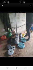 Body sculpture cast iron weights